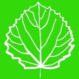 logo verde aapaesaggi