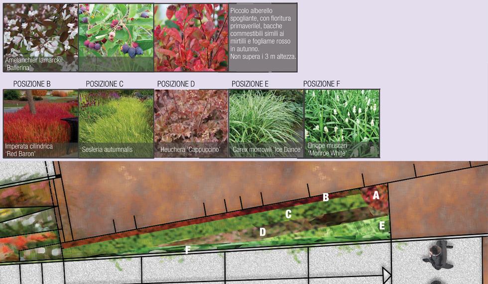 C:Documents and SettingsProprietarioDocumentiLAVORI NB2011_